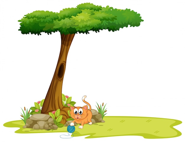 Um gato laranja brincando debaixo da árvore