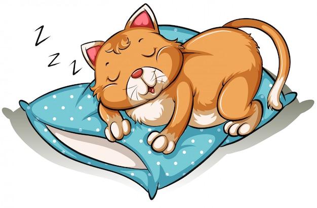 Um gato tirando uma soneca