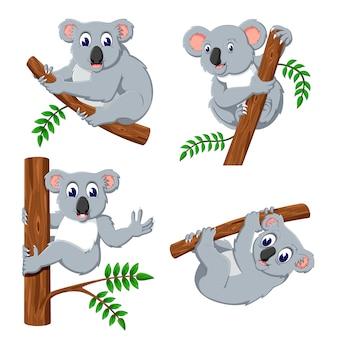 Um grupo de desenhos animados de coala