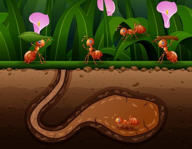 Um grupo de formigas trabalhando na ilustração do buraco