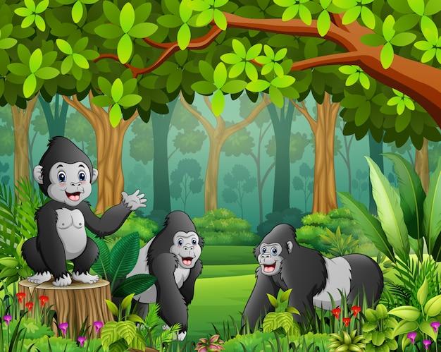 Um grupo de gorilas com vista para a floresta verde