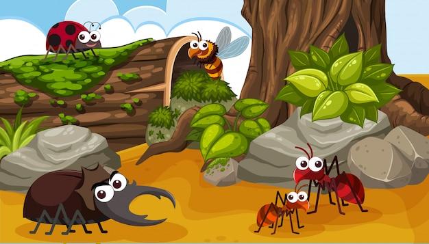 Um grupo de inseto feliz na floresta