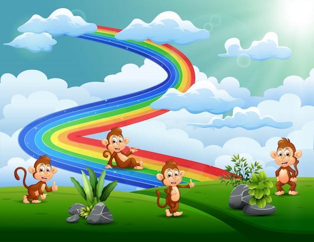 Um grupo de macacos no topo da colina com um arco-íris