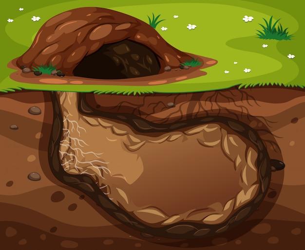 Um habitat subterrâneo animal