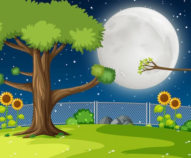Um jardim noturno