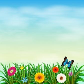 Um jardim sob o céu azul claro com uma borboleta