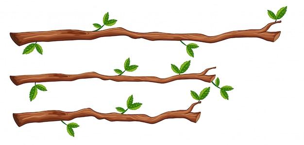 Um, jogo, de, filial árvore