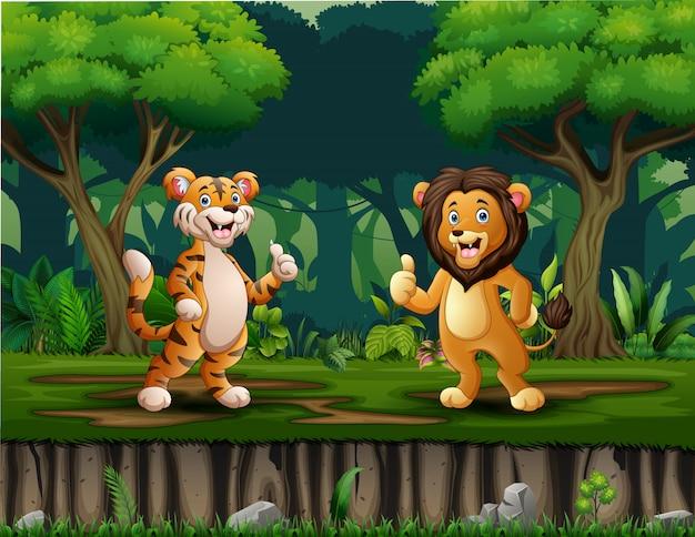 Um leão e tigre desistindo polegar no meio da floresta