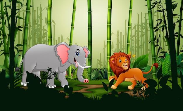 Um leão e um elefante na paisagem da floresta de bambu