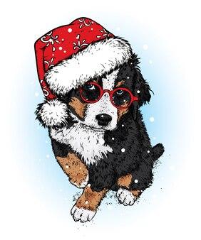 Um lindo cachorro com um chapéu e lenço de natal