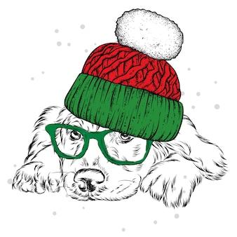 Um lindo cachorro com um chapéu, óculos. natal e ano novo.