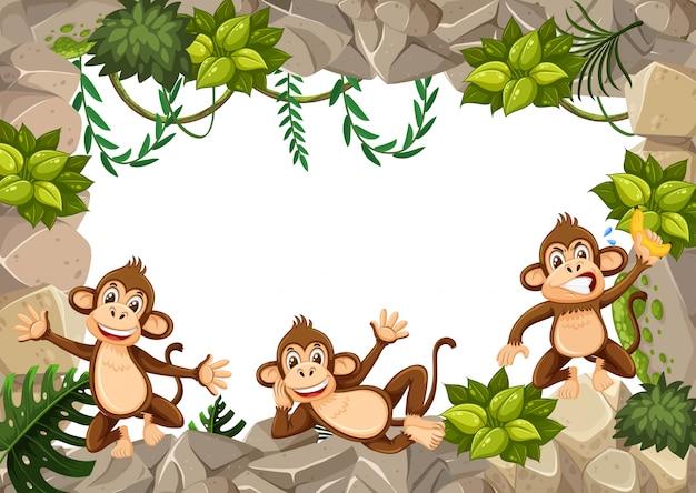 Um macaco em pensionista selvagem