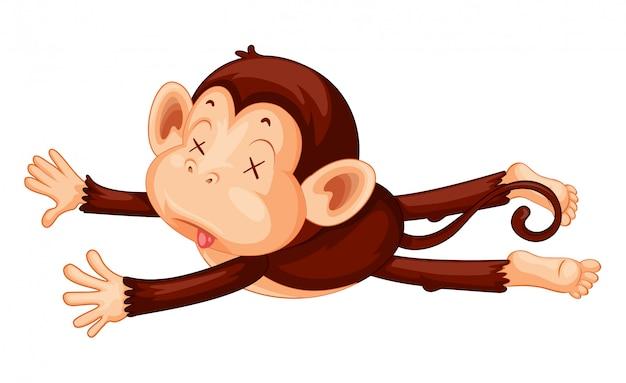 Um macaco playdead no fundo branco