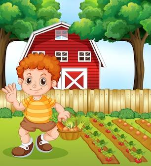 Um menino colheita vegetal