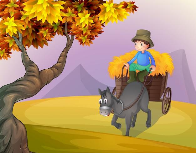 Um menino e um cavalo buggy
