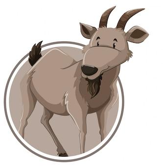 Um modelo de etiqueta de cabra