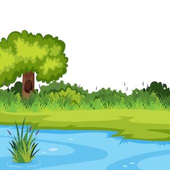 Um modelo de rio natureza
