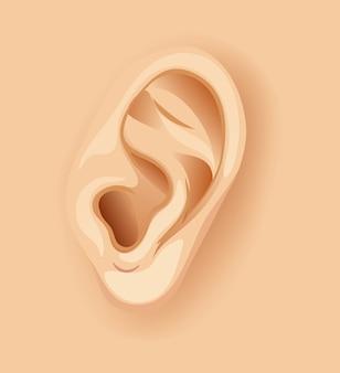 Um ouvido humano close up