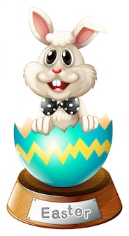 Um ovo rachado com um coelho