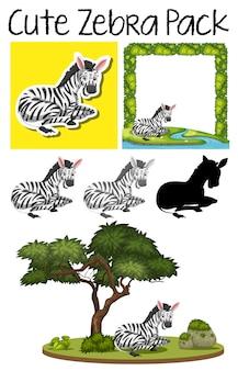 Um pacote de giro zebra