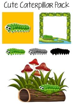 Um pacote de lagarta bonito
