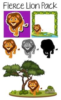 Um pacote de leão bonito
