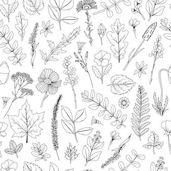 Um padrão uniforme de folhas secas e flores para o herbário.