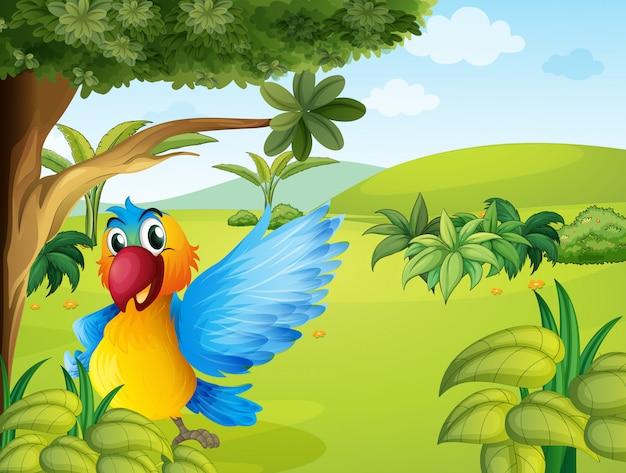 Um papagaio colorido na floresta