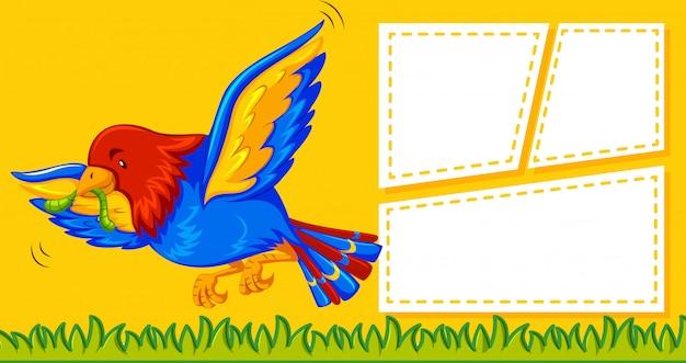 Um papagaio no modelo de nota