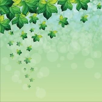 Um papel especial com fundo verde