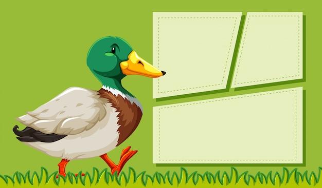 Um pato em quadros de nota em branco