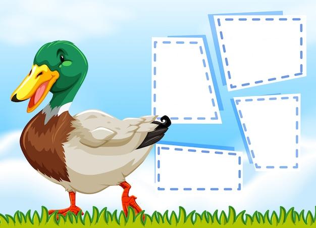 Um pato no modelo de nota