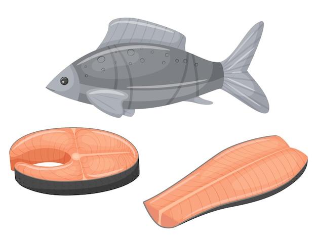 Um peixe cru inteiro e dois pedaços de filés crus em um fundo branco