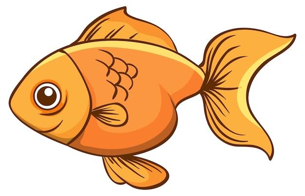 Um peixinho dourado em fundo branco