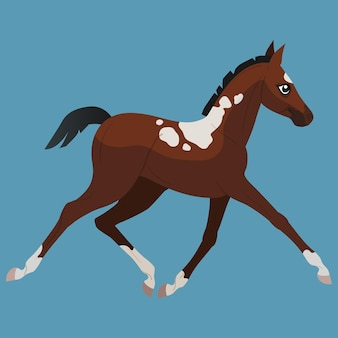 Um pequeno pônei baio com manchas corre a trote. estilo simples de ícones de cavalos. ilustração isolada em vetor.