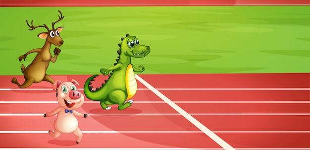 Um porco, um crocodilo e um cervo correndo