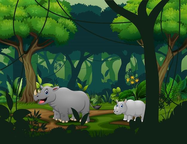 Um rinoceronte e seu filhote atravessam a floresta
