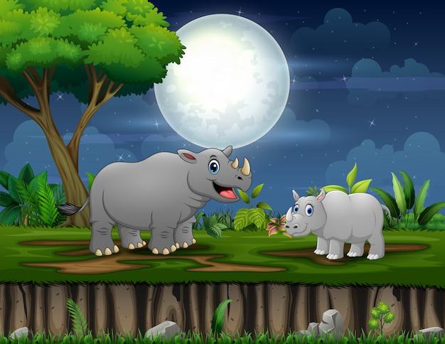 Um rinoceronte e seu filhote brincando à noite
