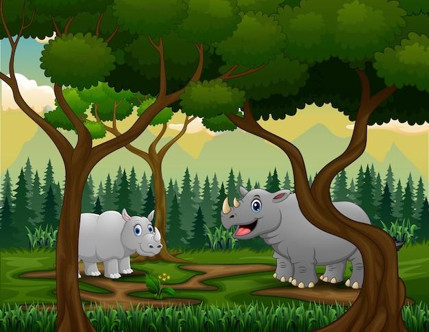 Um rinoceronte e seu filhote no meio da floresta