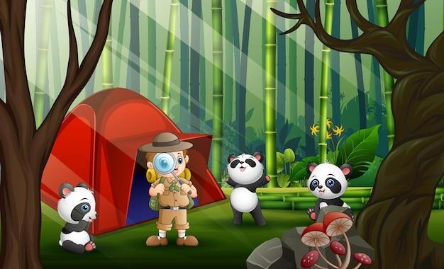 Um safari boy e três pandas na floresta de bambu