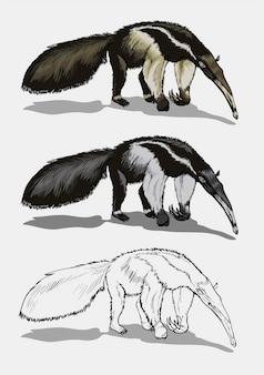 Um tamanduá gigante em cores e preto e branco