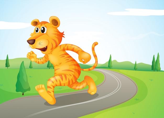Um tigre correndo na rua