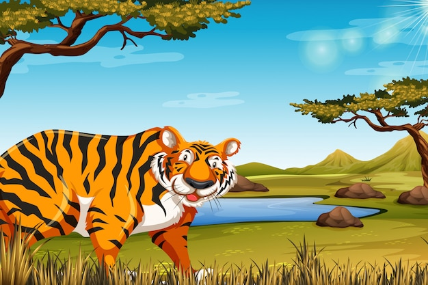 Um tigre na cena da natureza