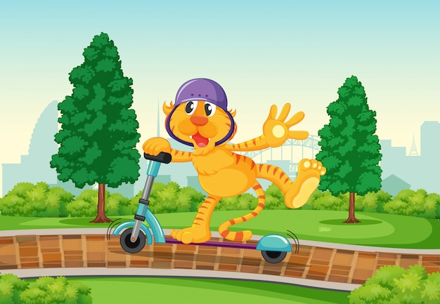 Um, tigre, tocando, pontapé scooter, parque