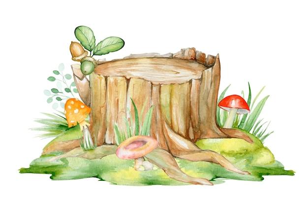 Um toco de madeira em um gramado verde, cogumelos de cores diferentes e bolotas.