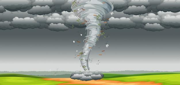 Um tornado na natureza