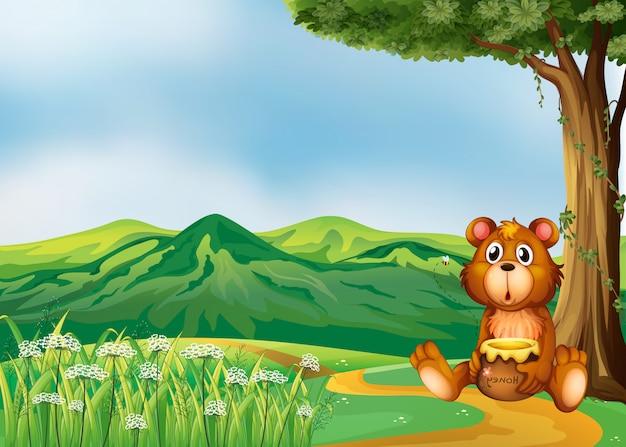 Um urso acima das colinas