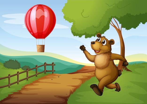 Um urso correndo atrás do balão de ar quente
