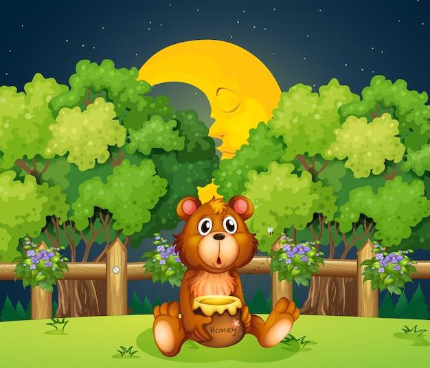 Um urso na floresta no meio da noite