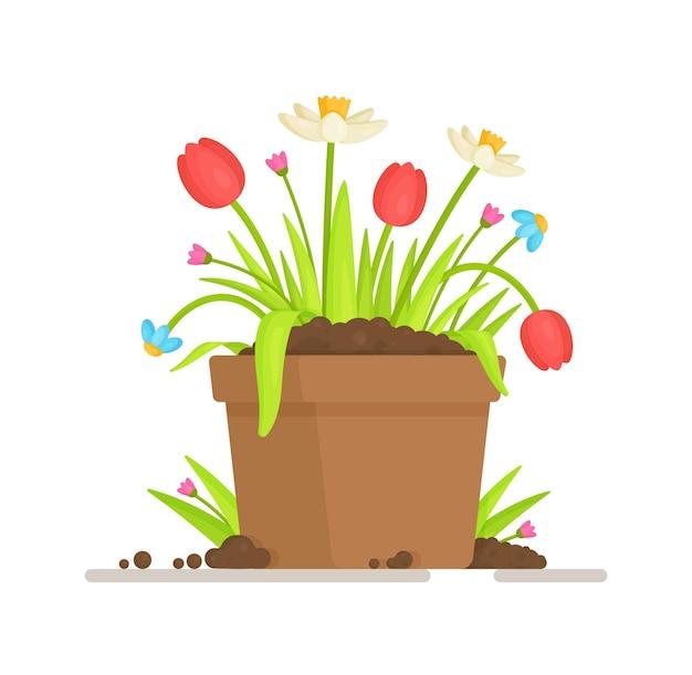 Um vaso com tulipas. ilustração de brotos e sementes.